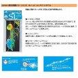 画像3: FINA (ハヤブサ)無双真鯛フリースライドSLヘッド コンプリートモデル75g (3)
