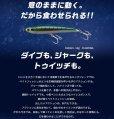 画像5: (25%引) マリア NEW ラピード F160 50g 青物 大物 海外向き 国産 日本製 ソルト シーバス ルアー ミノー ヤマリア ヤマシタ
